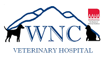 WNC Veterinary Hospital