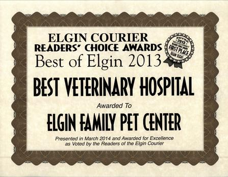 Elgin Family Pet Center awarded Best Veterinary Hospital