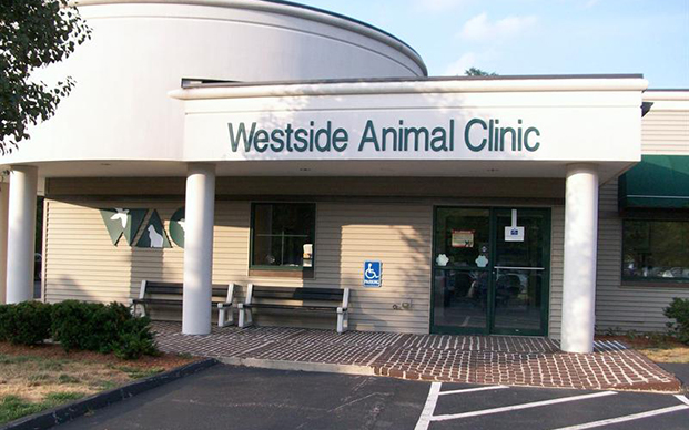The outside of our veterinary clinic in Worchester, MA
