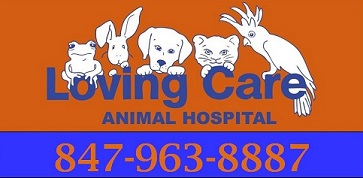 Loving Care Animal Hospital