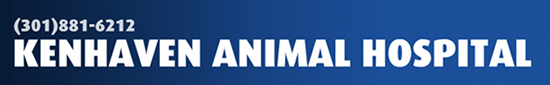 Kenhaven Animal Hospital