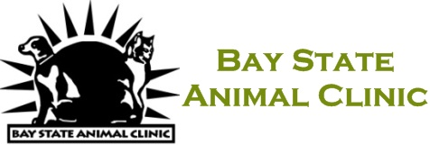 Bay State Animal Clinic