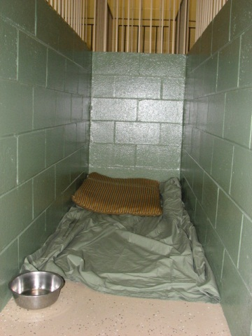 Kennel inside