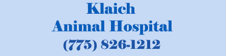 Klaich Animal Hospital
