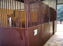 Our Horse Barn