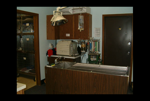 Dentistry Area
