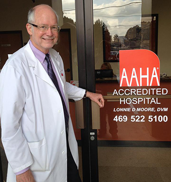 Veterinarian outside of our AAHA Accredited hospital