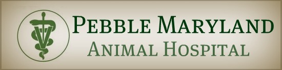 Pebble Maryland Animal Hospital