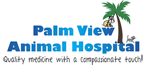 Palm View Animal Hospital Logo - Quality medicine with a compassionate touch!