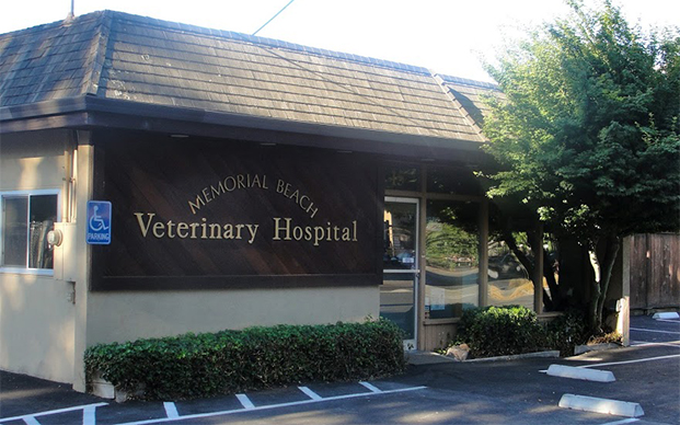 The outside of our hospital in Healdsburg, CA