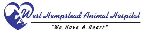 West Hempstead Animal Hospital