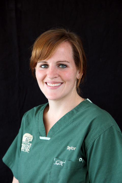 Taylor Quirk, Veterinary Nurse