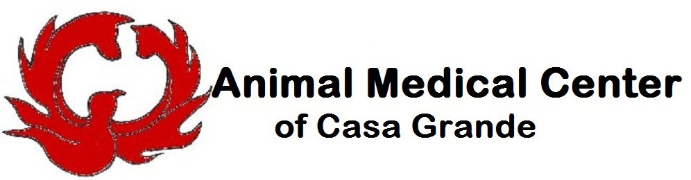 Animal Medical Center of Casa Grande