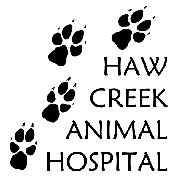 Wild Dog Tracks Logo