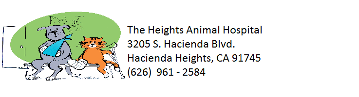 The Heights Animal Hospital
