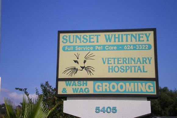Sunset Whitney Full Service Pet Care