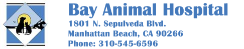 Bay Animal Hospital