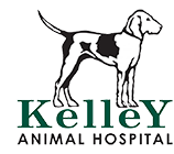 Kelley Animal Hospital, PLLC