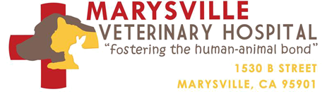 Marysville Veterinary Hospital