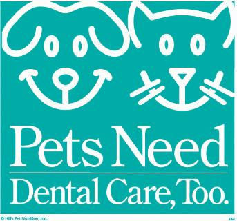 Pets Need Dental Care Too