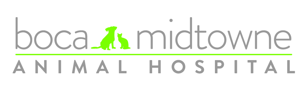 Boca Midtowne Animal Hospital
