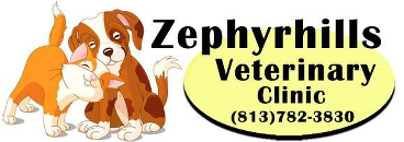 Zephyrhills Veterinary Clinic