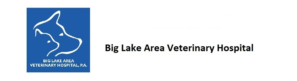 Big Lake Area Veterinary Hospital