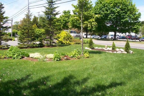 Our gardens.