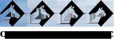 Osceola Veterinary Service logo
