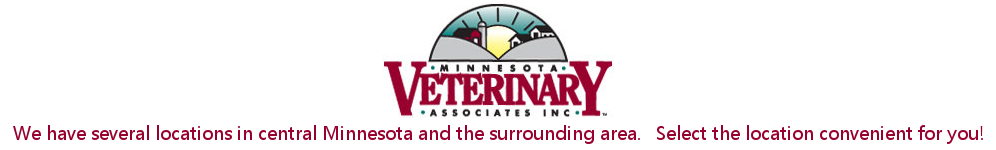 Minnesota Veterinary Associates