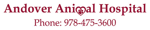 Andover Animal Hospital
