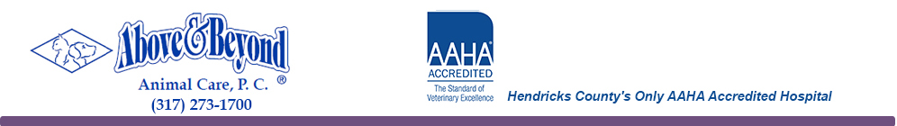 Above and Beyond Animal Care, P.C. - Hendricks County's Only AAHA Accredited Hospital