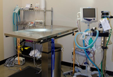 Veterinary Equipment