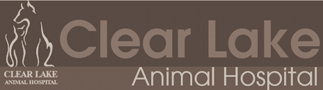 Clear Lake Animal Hospital