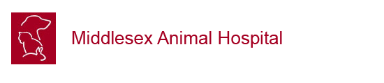 Middlesex Animal Hospital