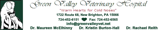Green Valley Veterinary Hospital