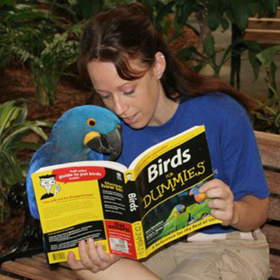 Melissa and Macaw