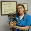 Dr. Melissa J Barnes, DVM