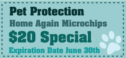 Pet Protection Home Again Microchips, $20 Special