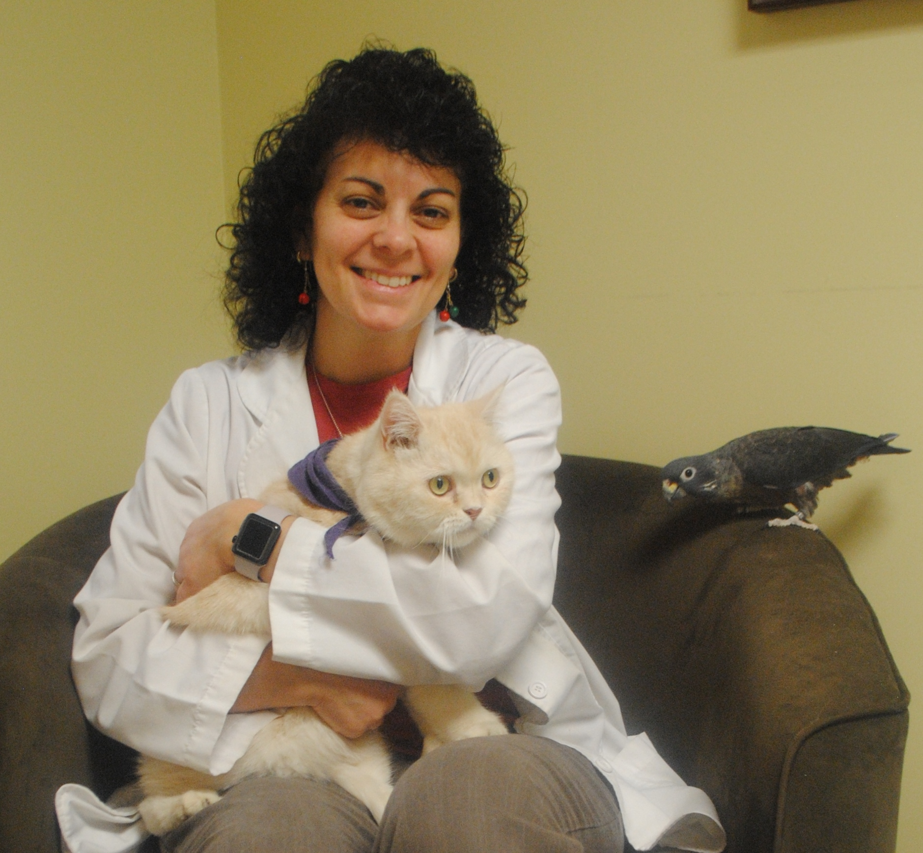 kensington bird and animal hospital veterinarians and staff theresa cianciolo dvm