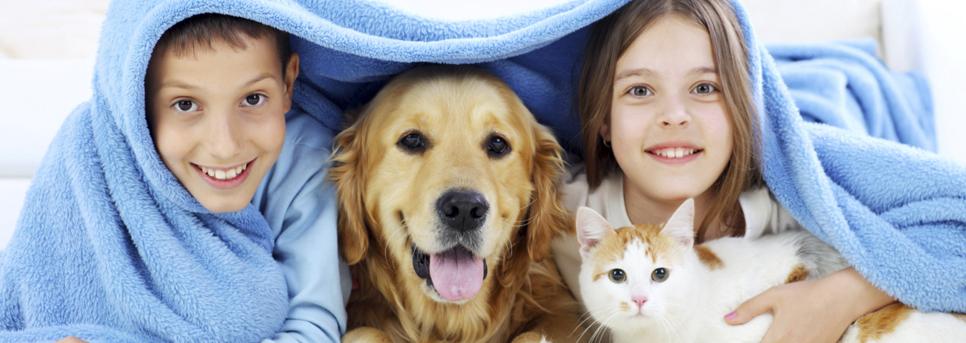 Girl Cat Canine Feline Sun & Sky Dog Kids Sun Young Boy Sky