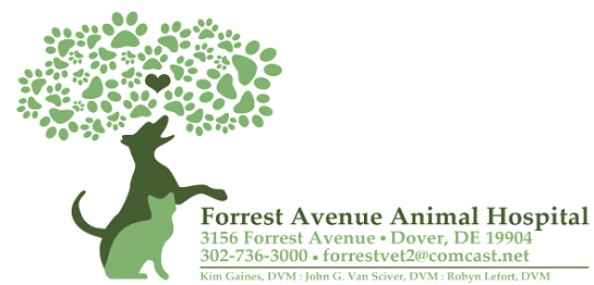 Forrest Avenue Animal Hospital, PA