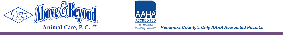 Hendricks County's Only AAHA Accredited Hospital