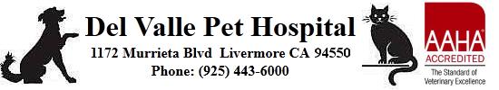 Del Valle Pet Hospital