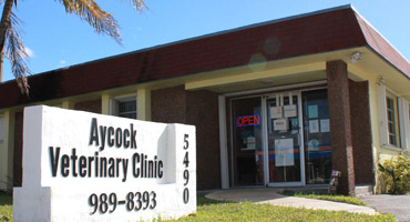 Aycock Veterinary Clinic