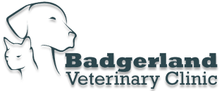 Badgerland Veterinary Clinic