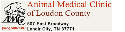 Animal Medical Clinic of Loudon County