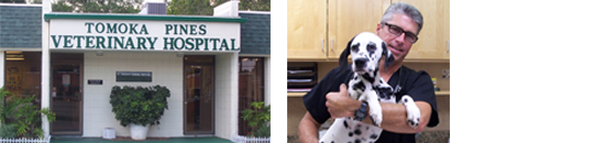 Front of Tomoka Pines Veterinary Hospital and Doctor holding a Dalmatian