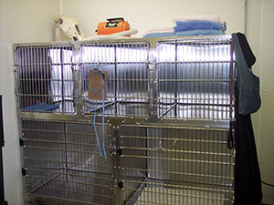 Grooming Cages