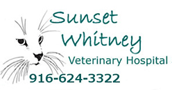 Sunset Whitney Veterinary Hospital